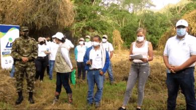 Photo of Lote impactado por un incendio forestal en el muncipio de Alvarado fue reforestado con 1.000 árboles de Iguá