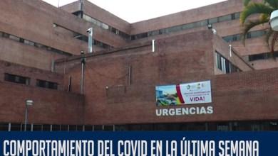 Photo of Personas entre los 30 y 40 años los más contagiados por Covid-19 en el Tolima