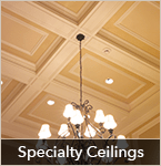 Specialty Ceiling Gallery