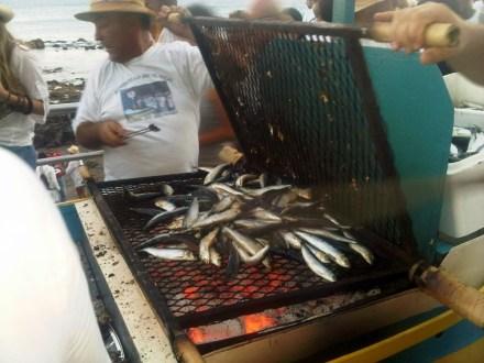 Asando Pescado Vara del Pescado 2011