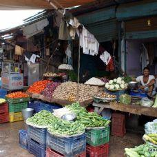 canariasagusto-india2012-delhi mercado