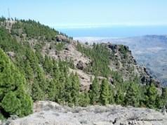 Pico de Las Nieves & Roque Nublo (4)