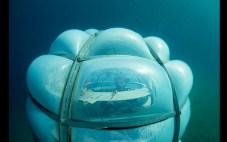 Jardin de Nemo (11)