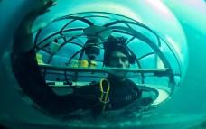 Jardin de Nemo (12)