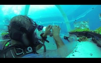 Jardin de Nemo (8)