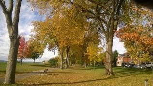 Tree-lined Breakwater Park borders Lake Ontario near Queen's University in Kingston Ontario.