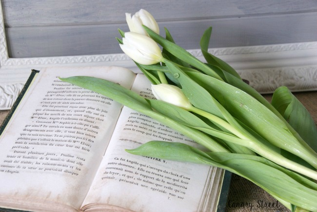book and tulips canary street crafts