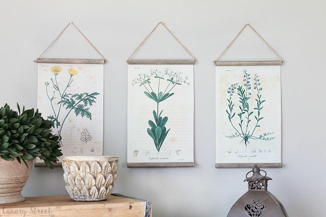 Easy DIY botanical print wall hanging using free botanical printables. http://canarystreetcrafts.com/