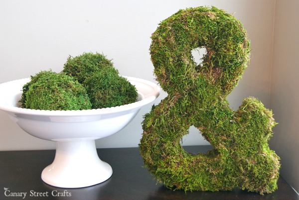 Easy projects with moss {Canary Street Crafts}