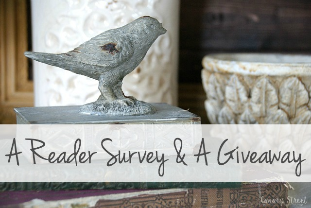 reader survey canary street crafts