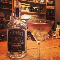 A Tale of Seven American Martinis