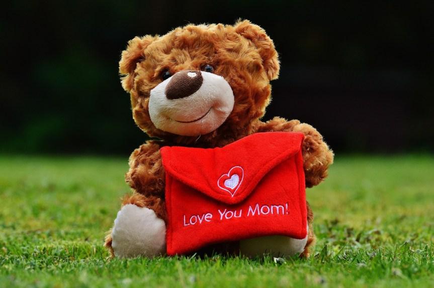 teddy-1338881_1920