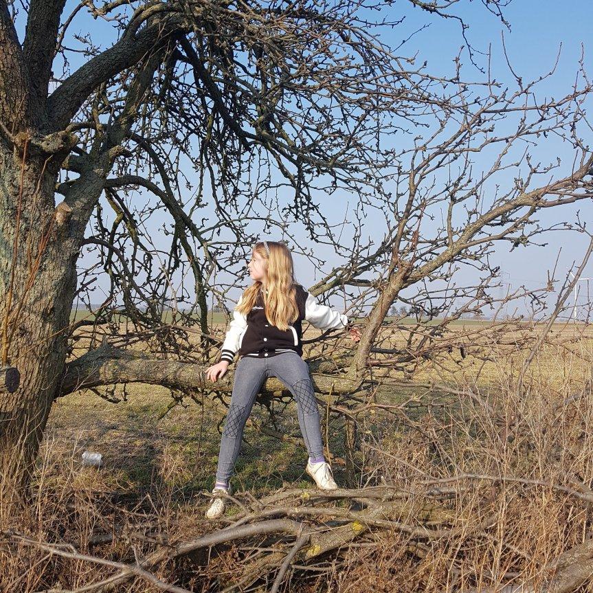 Das Kind bloggt; eine Kurzgeschichte