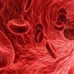 膵臓がんの光免疫療法 オランダのフローニンゲン大学で治験