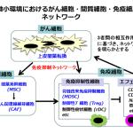 腫瘍免疫と丸山ワクチンのエビデンス