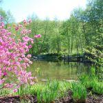 Le Quatre-Saisons - printemps