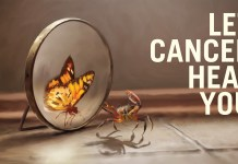 win over cancer with an holistic approach