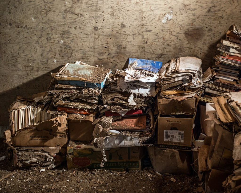 Some of the more than 100,000 pages of discovery material related to the chemical industry that were stored in Carol Van Strum's barn in rural Oregon. Photo: Risa Scott/RF Scott Imagery