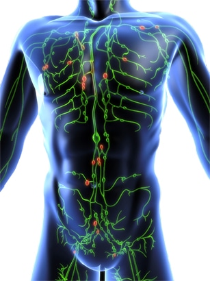 LYMPHATIC SYSTEM CLEANSING