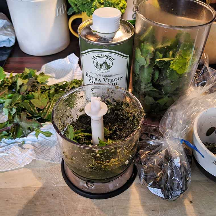 Dandelion Green and Pumpkin Seed Pesto on Kelp Noodles is easy to make