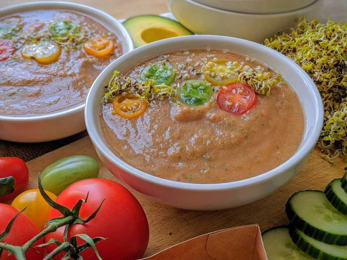 Simple whole food plant based low carb gazpacho