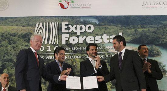 inauguran-expo-forestal