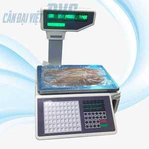 Hãng sản xuất: Shanghai Yousheng Weighing Apparatus Model: TM-A Thời gian bảo hành: 12 tháng Xuất xứ: Trung Quốc    Mức cân 30kg – – –   Độ chia 10g – – –