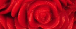 red rose valentine candles