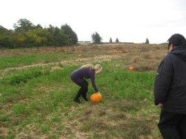 pumpkinpickin05l