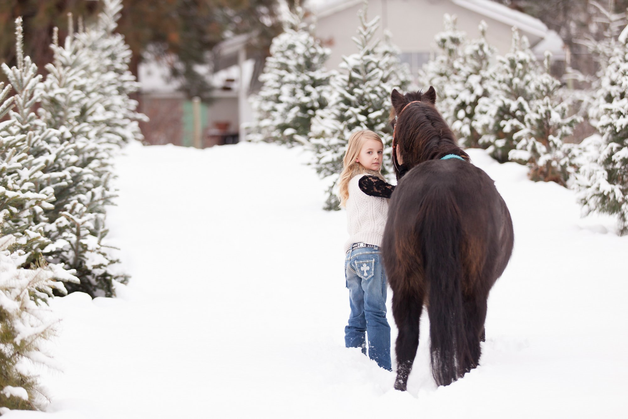 Ashlyn & Pippy | Equine