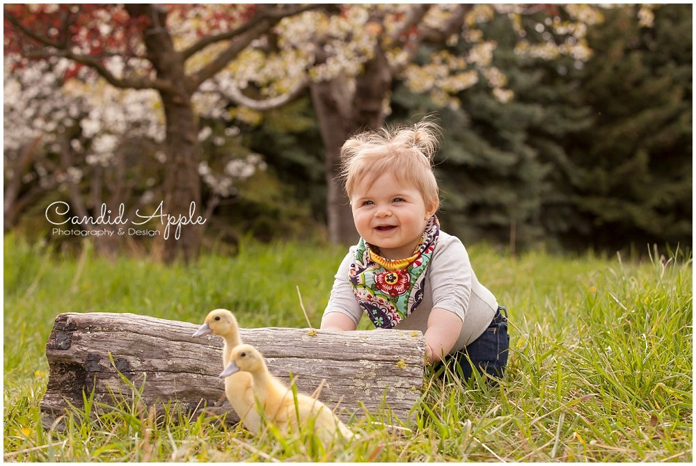 Heidi | Springtime On the Farm