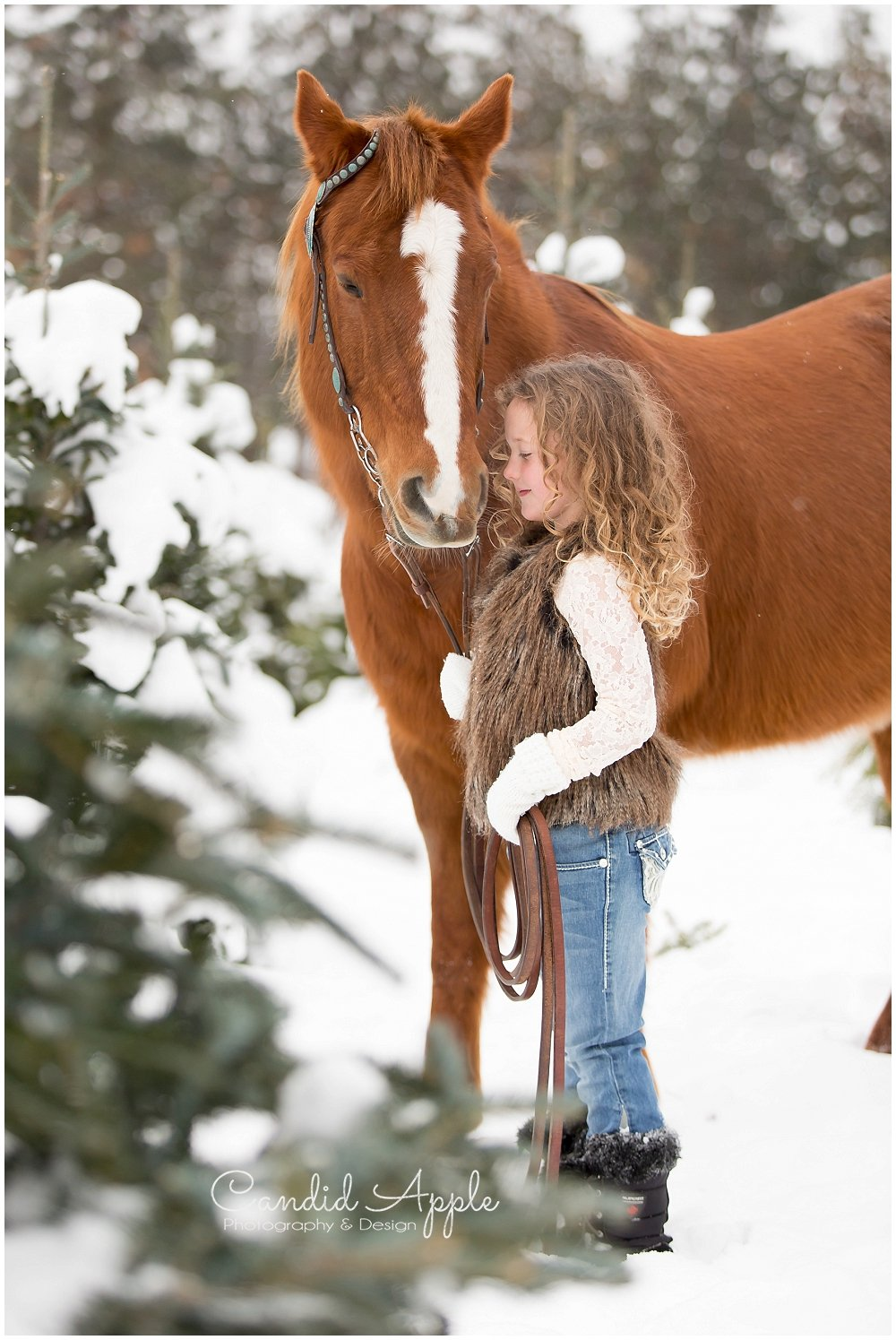 Kelowna_Winter_Equine_Photographers__0010