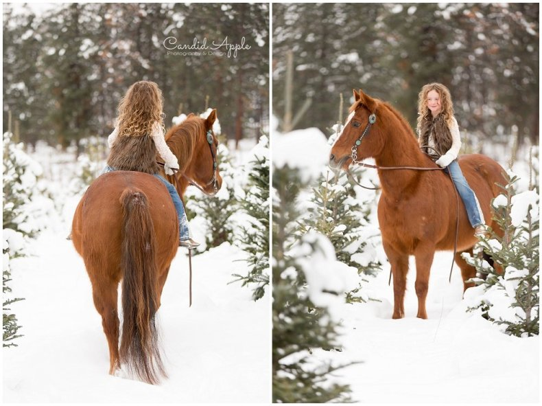 Kelowna_Winter_Equine_Photographers__0030