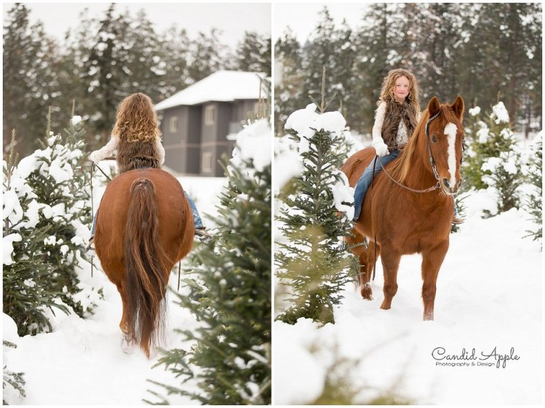 Kelowna_Winter_Equine_Photographers__0032