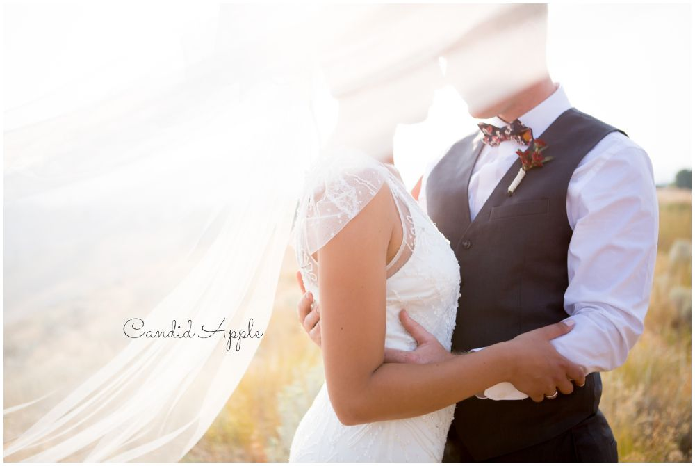 Couple under a blowing veil in the sunlight