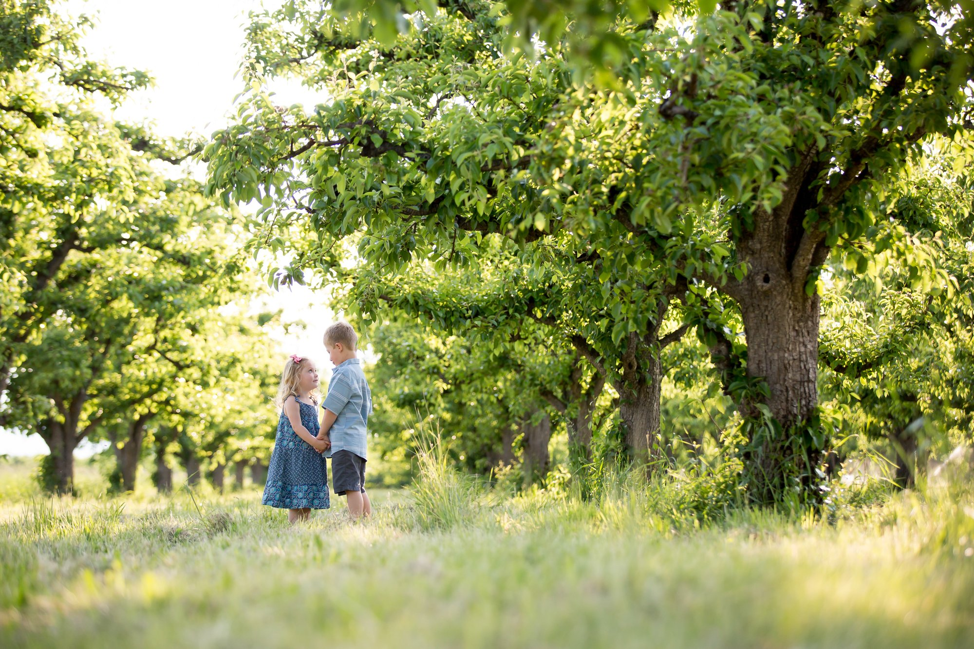 A brother and sister standing in an orchard