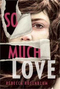 Book Review: So Much Love by Rebecca Rosenblum