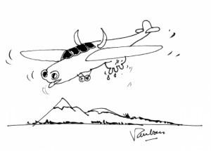 Avion vache