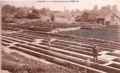 Thoiry Pisciculture