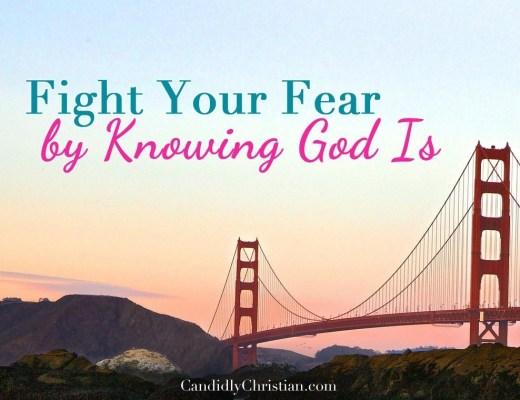 Fear Fighting by Kelly Balarie