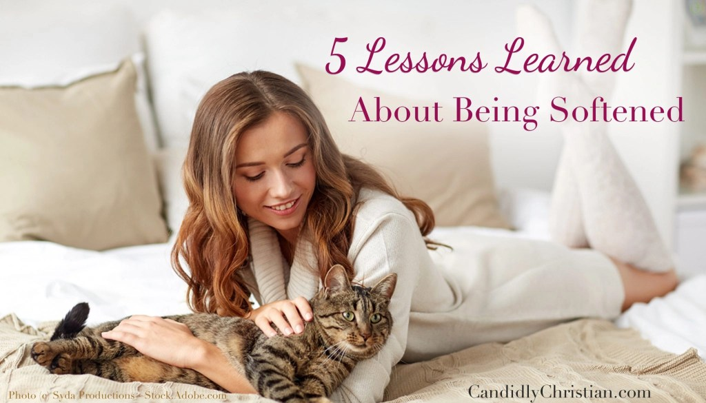 5 lessons learned about being softened