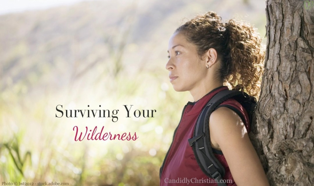 Surviving your wilderness - 6 Faith-Filled Survival Tips