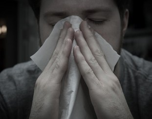 5-most-common-allergies-in-home