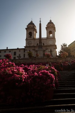 Golden hour over the spanish steps