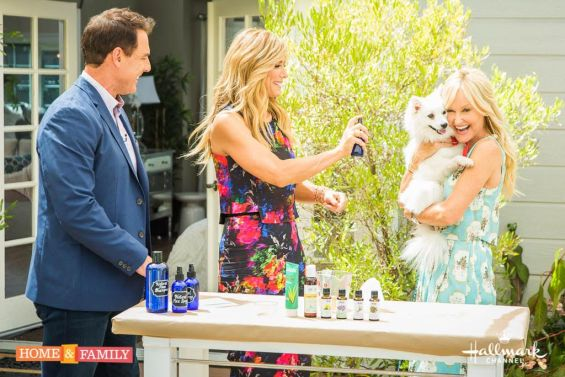 Watch Hallmark Home & Family show member and lifestyle expert Sophie Uliano show Mark Steines and how to Debbie Matenopoulos make DIY natural dog flea solutions! Learn how to make DIY natural dog flea shampoo and DIY natural dog flea spray. Photo Credit: Copyright 2016 Crown Media Family Networks/Photographer: Jeremy Lee Watch Hallmark Home & Family show member and lifestyle expert Sophie Uliano make DIY natural dog flea solutions! Learn how to make DIY natural dog flea shampoo and DIY natural dog flea spray. Photo Credit: Copyright 2016 Crown Media Family Networks/Photographer: Jeremy Lee