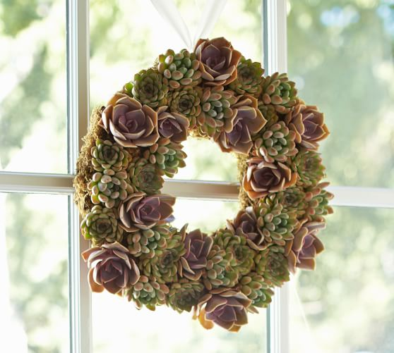 Pottery Barn LIVE SUCCULENT WREATH pottery barn friends and family sale