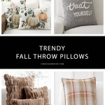 25 Trendy Fall Throw Pillows In Every Style For Your Home Candie Anderson