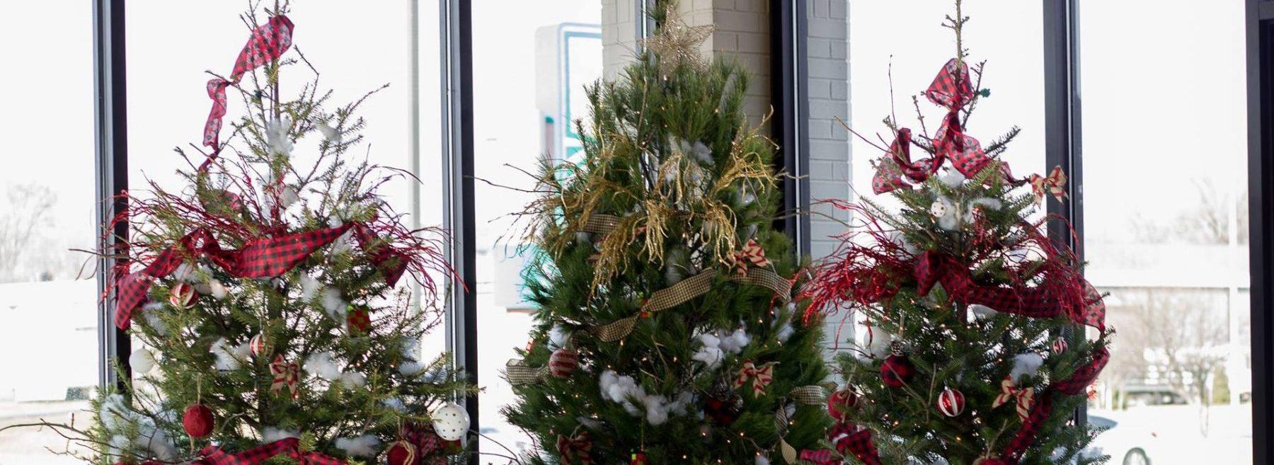 christmas trees at omaha church
