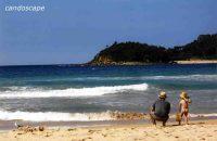 シドニービーチ
