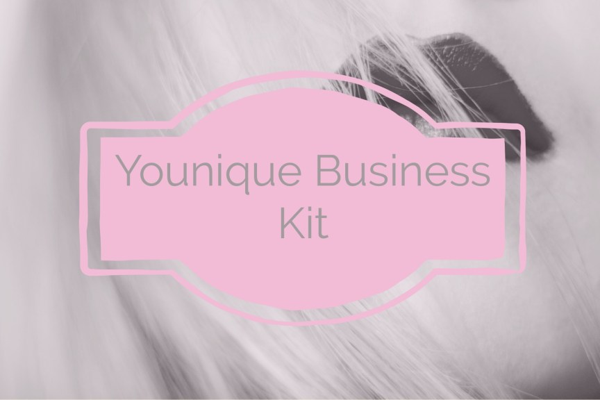 younique business kit
